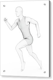Person Jogging Acrylic Print