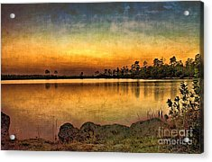 Acrylic Print featuring the photograph Pine Glades Lake by Anne Rodkin