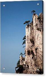 Pine Trees On Huangshan Mountain China Acrylic Print by Fototrav Print