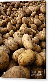 Potatoes Acrylic Print