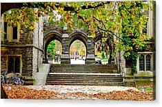 Princeton University Acrylic Print by Olga Breslav