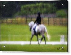 Acrylic Print featuring the photograph Rainy Day Dressage by Joan Davis