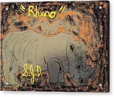 Rhino Acrylic Print by Joe Dillon