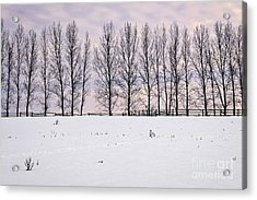 Rural Winter Landscape Acrylic Print