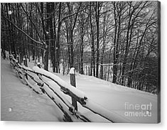 Rural Winter Scene With Fence Acrylic Print by Elena Elisseeva