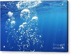 Scuba Diver's Bubbles Rising-up To Surface Acrylic Print by Sami Sarkis