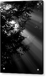 September Morning Acrylic Print