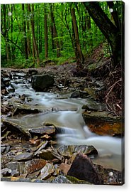 Serenity Acrylic Print by Frozen in Time Fine Art Photography