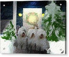 3 Sheepdogs Acrylic Print
