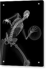 Skeleton Playing Basketball Acrylic Print by Sciepro/science Photo Library