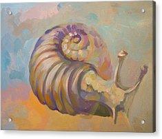 Snail Acrylic Print by Filip Mihail