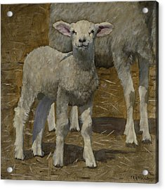 Acrylic Print featuring the painting Spring Lamb by John Reynolds