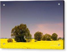 Spring Landscape Acrylic Print by Michal Bednarek
