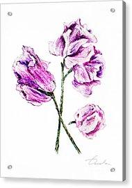 Sweet Pea Acrylic Print