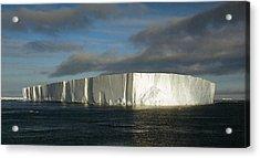 Tabular Iceberg Antarctica Acrylic Print by Carole-Anne Fooks