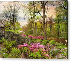 The Azalea Garden Acrylic Print by Jessica Jenney
