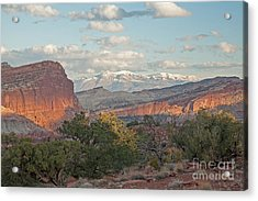 The Goosenecks Capitol Reef National Park Acrylic Print
