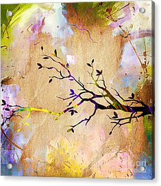 Tree Branch Collection Acrylic Print