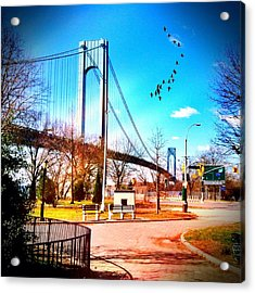 Verrazano Narrows Bridge Acrylic Print by Frank Winters
