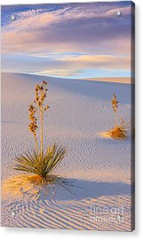 White Sands National Monument Acrylic Print