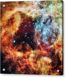 30 Doradus Star Clusters Acrylic Print by Nasa/esa/stsci/e. Sabbi/science Photo Library
