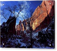 Zion National Park, Utah Acrylic Print