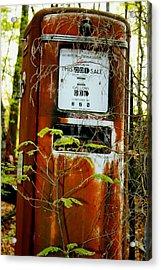 Acrylic Print featuring the photograph .32gal by Steve Godleski