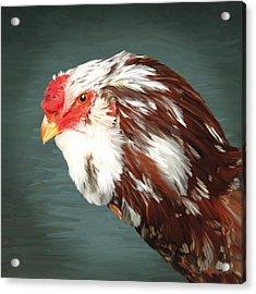 33. Orlov Head Acrylic Print by Sigrid Van Dort