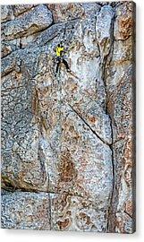 Rock Climber Acrylic Print by Elijah Weber