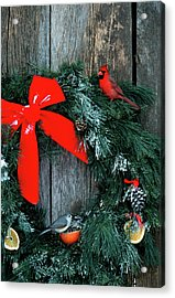 Northern Cardinal (cardinalis Cardinalis Acrylic Print by Richard and Susan Day