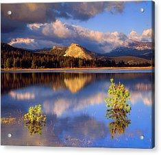 Usa, California, Yosemite National Park Acrylic Print by Jaynes Gallery
