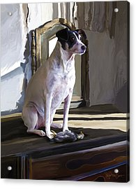 38. Ugly Dog Acrylic Print by Sigrid Van Dort