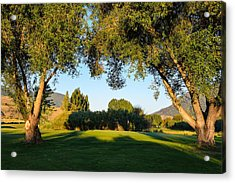 3rd Green At Quilchena  Acrylic Print