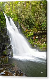 Abrams Falls Acrylic Print by Frozen in Time Fine Art Photography
