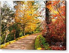 Autumn Colors Acrylic Print by Gaspar Avila