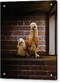4. Brick Chicks Acrylic Print