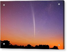 Comet Lovejoy Acrylic Print by Luis Argerich