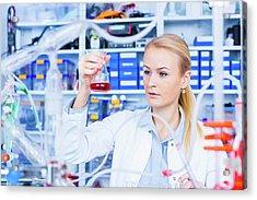 Female Chemist Working In Lab Acrylic Print by Wladimir Bulgar/science Photo Library