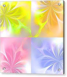 4 Flowers Acrylic Print by Steve K
