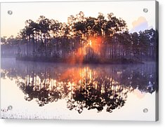 Foggy Sunrise At Long Pine Key Acrylic Print by Jonathan Gewirtz