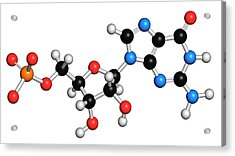 Guanosine Monophosphate Molecule Acrylic Print by Molekuul