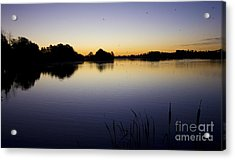 Lake Sunrise Acrylic Print by Darren Burroughs