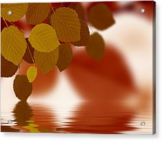 Leaves Reflecting In Water Acrylic Print by Aged Pixel