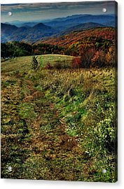 Max Patch Acrylic Print