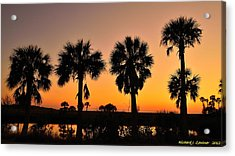 4 Palms In After Glow Acrylic Print by Richard Zentner