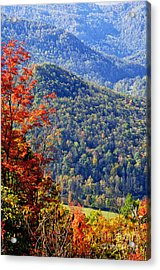 Point Mountain Overlook Acrylic Print by Thomas R Fletcher