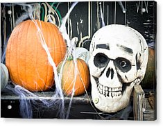 Pumpkins Acrylic Print by Tom Gowanlock