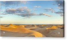 Sand Dunes In A Desert, Maspalomas Acrylic Print by Panoramic Images