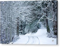 Snow Covered Road Passing Acrylic Print by Panoramic Images