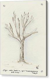 4 Trees-2nd Tree Winter Acrylic Print